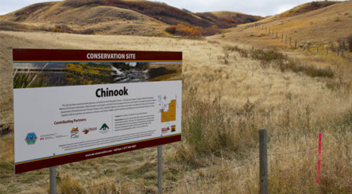 Chinook Conservation Site Purchase